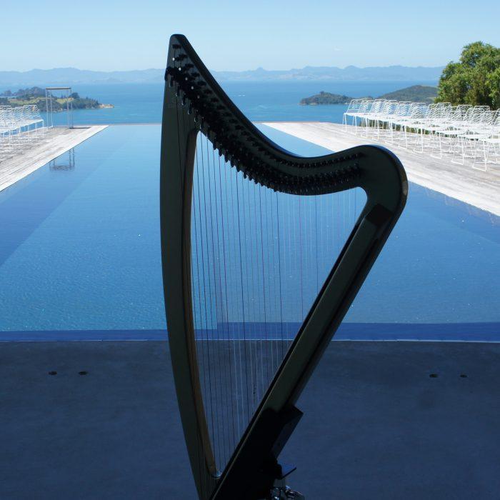 Robyn Sutherland Harp Player Hire