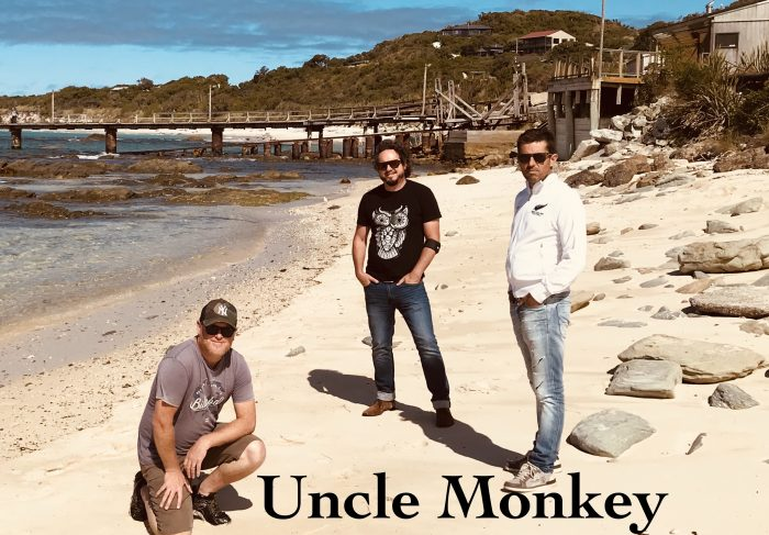 Uncle Monkey Cover Band Hire